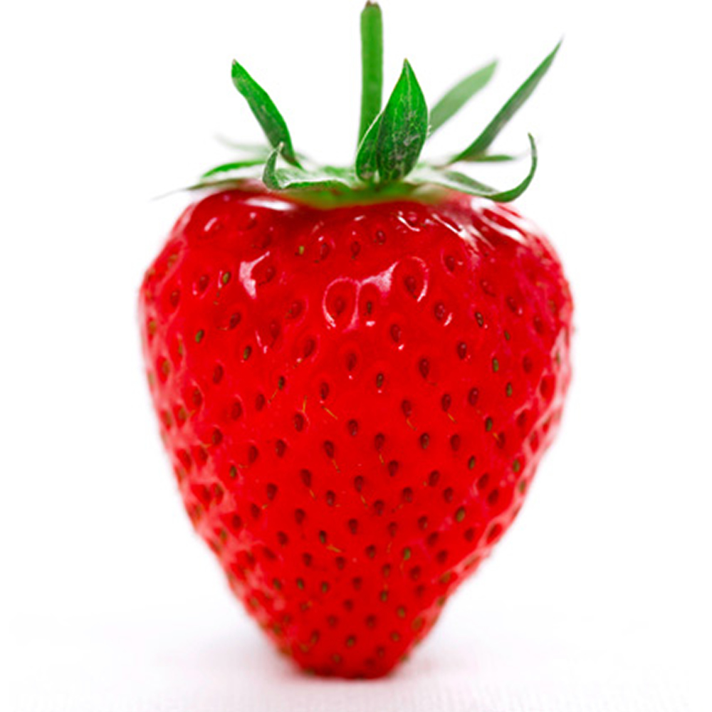 3 Strawberry Honeoye Fragaria Perennial Potted Fruit