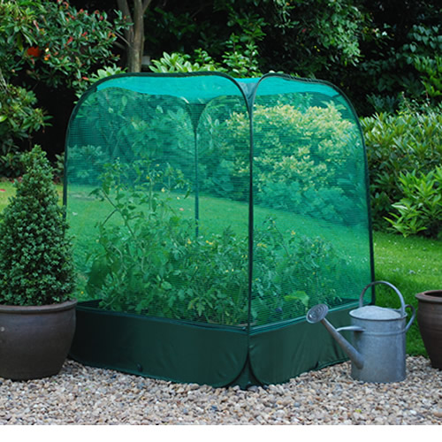 Raised Garden Box Material