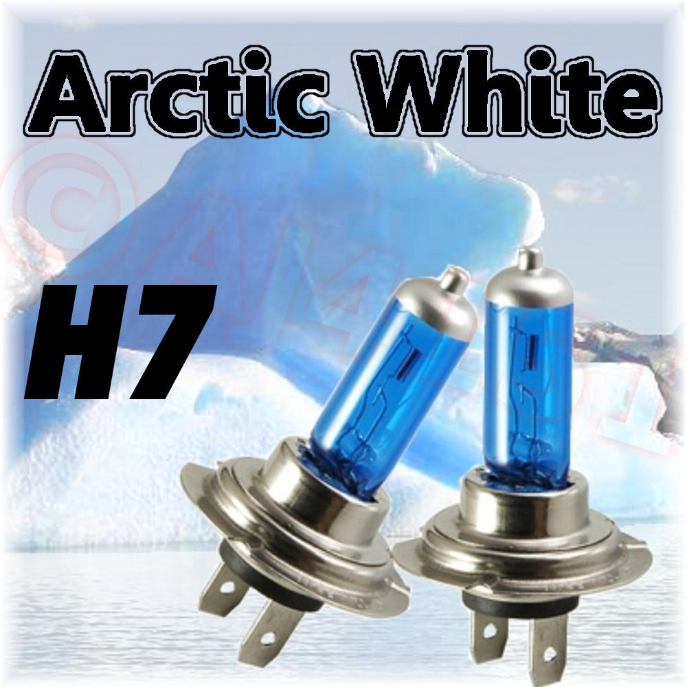 Honda Goldwing Headlight Bulb