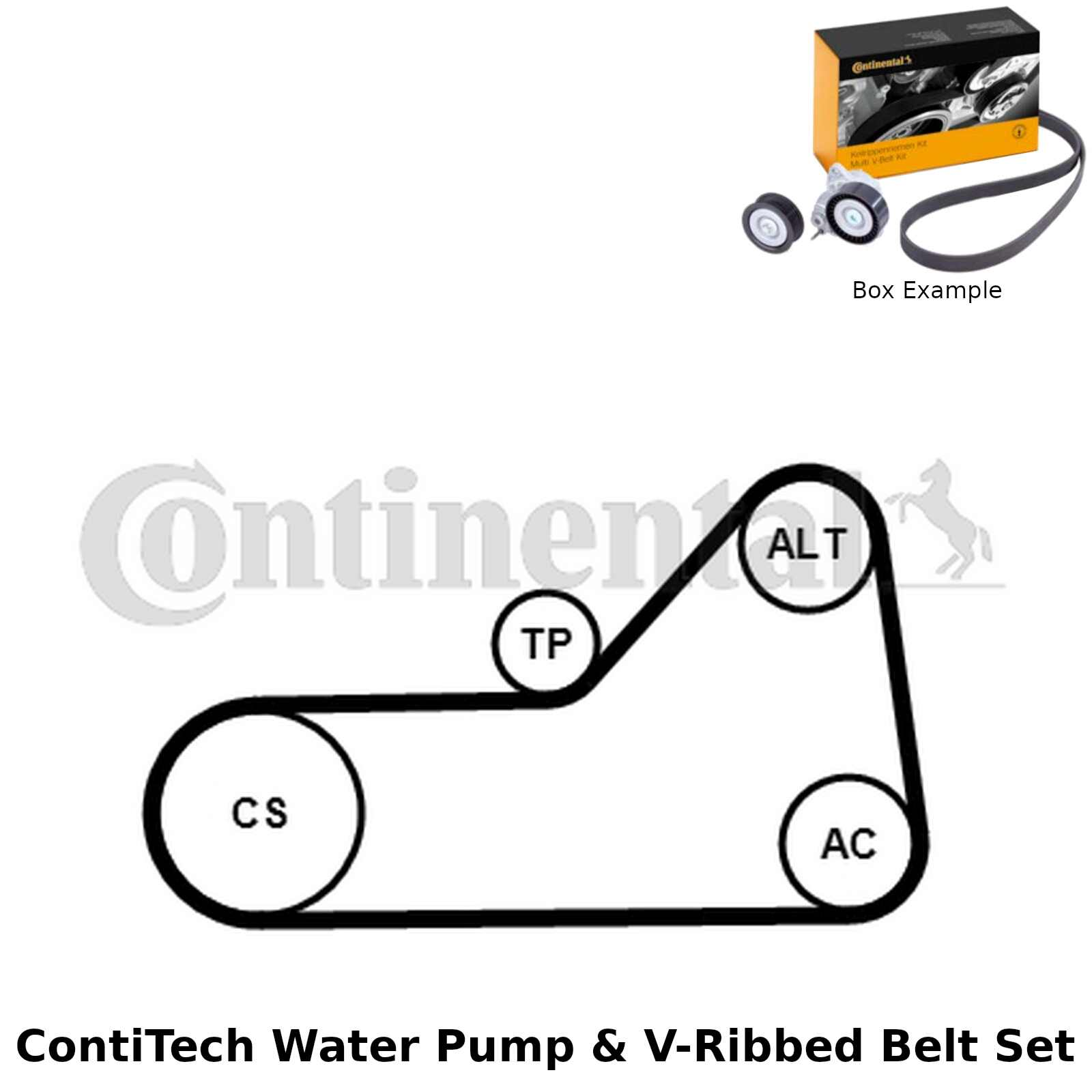 ContiTech Water Pump & V-Ribbed Belt Kit (Engine, Cooling