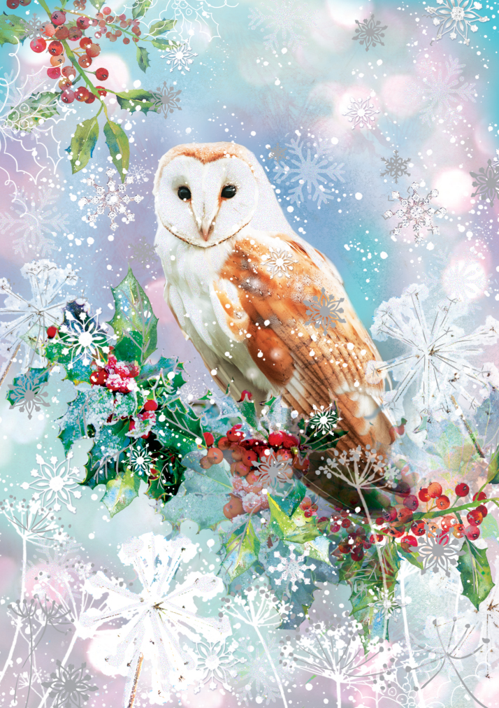 Pack Of 5 Barn Owl Traditional Christmas Cards Ling Design