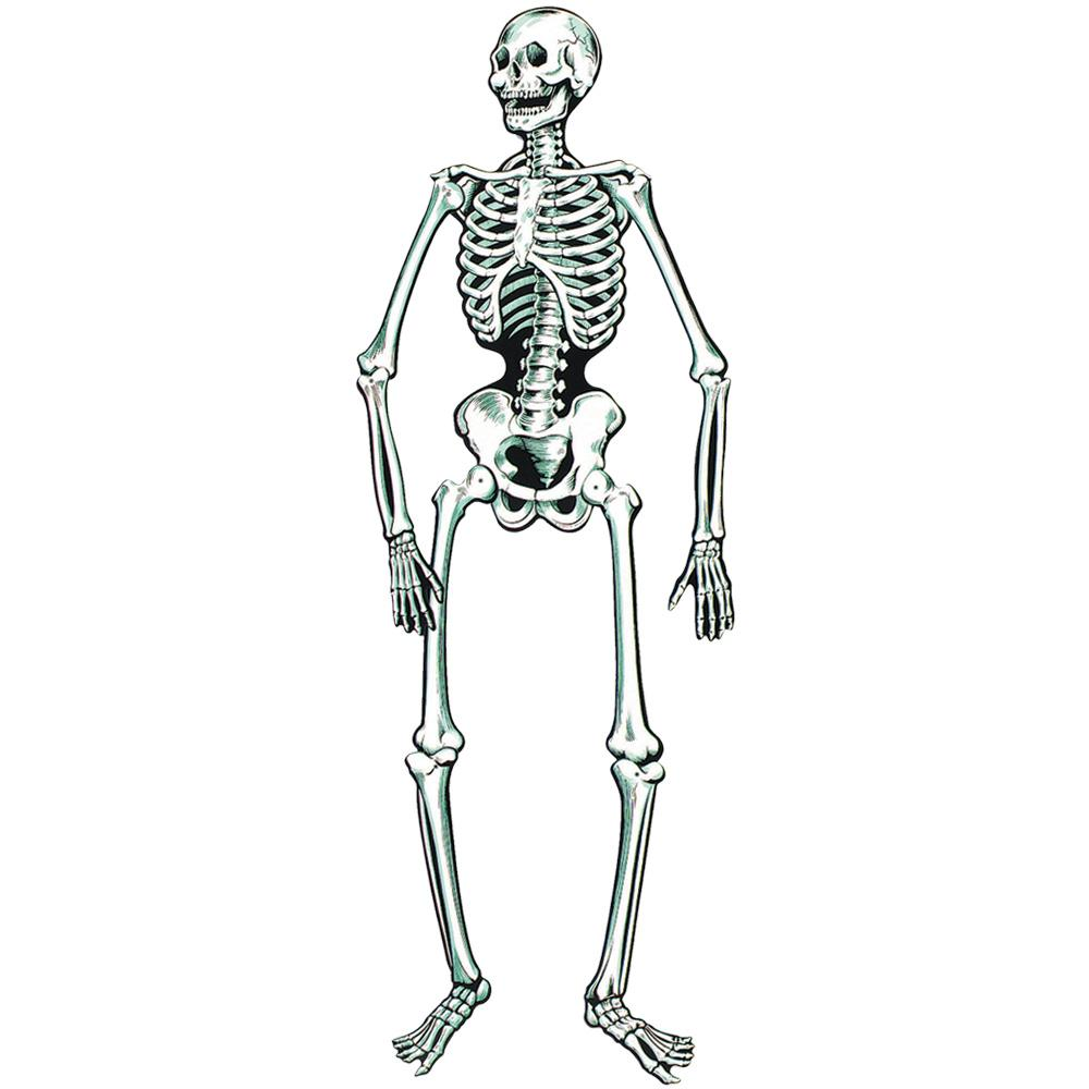 Peeks Life Size Paper Halloween Party Window Door Skeleton