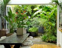 Patio pequeo de estilo tropical - Diseo de exteriores ...