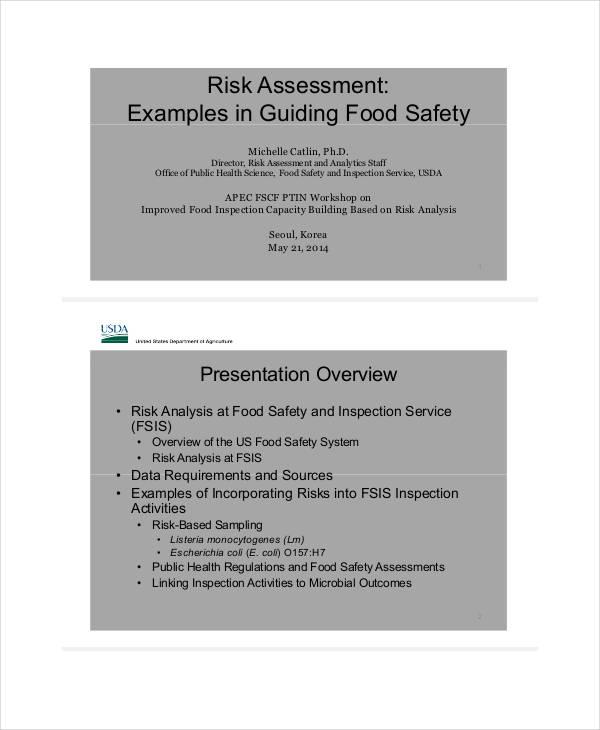 40+ Risk Assessment Examples & Samples