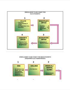 Student enrollment flow chart also charts examples  samples rh