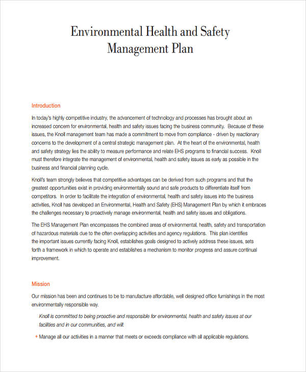 47 Management Plan Examples PDF Word Pages