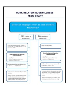 Injury reporting flow chart also charts examples  samples in pdf rh