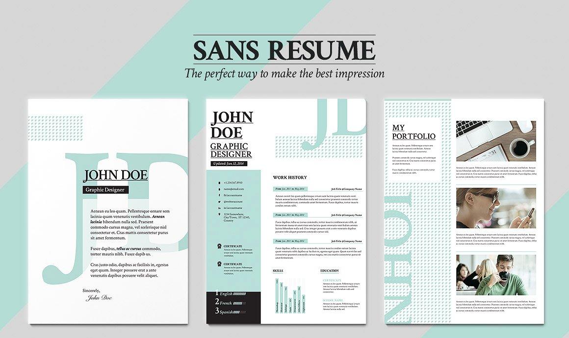 9 Professional Career Portfolio Examples Editable PSD