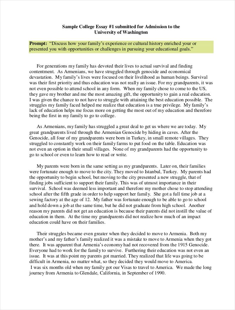 sample discussion essay