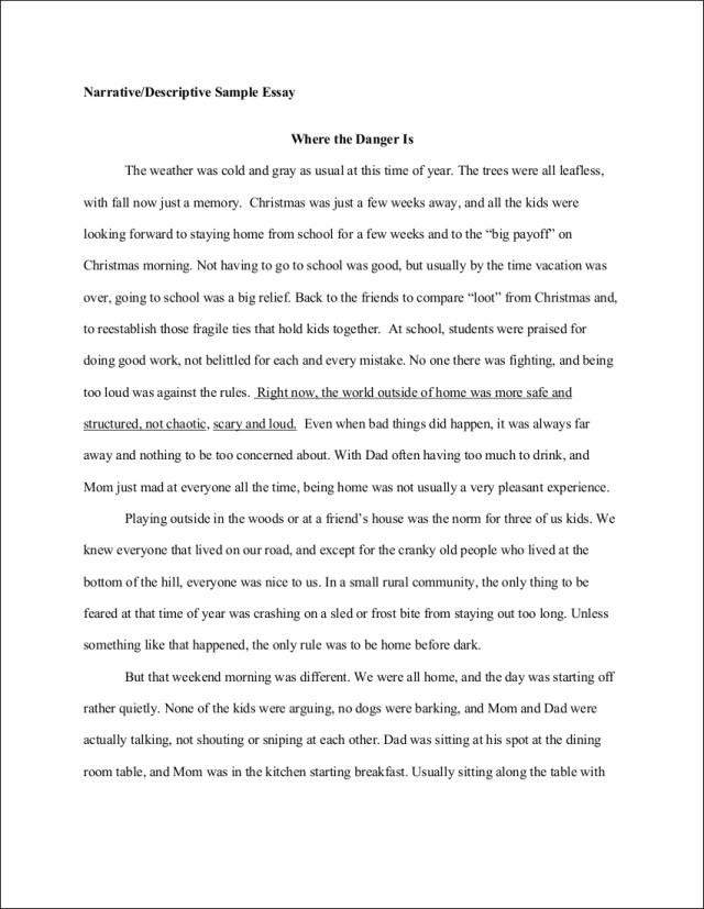FREE 29+ Descriptive Essay Examples in PDF  Examples