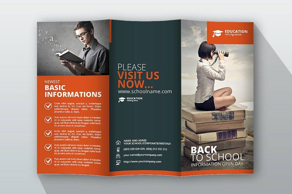 13 Education Trifold Brochure Examples PSD AI