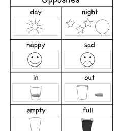 8+ Kindergarten Worksheet Examples - PDF   Examples [ 2200 x 1700 Pixel ]