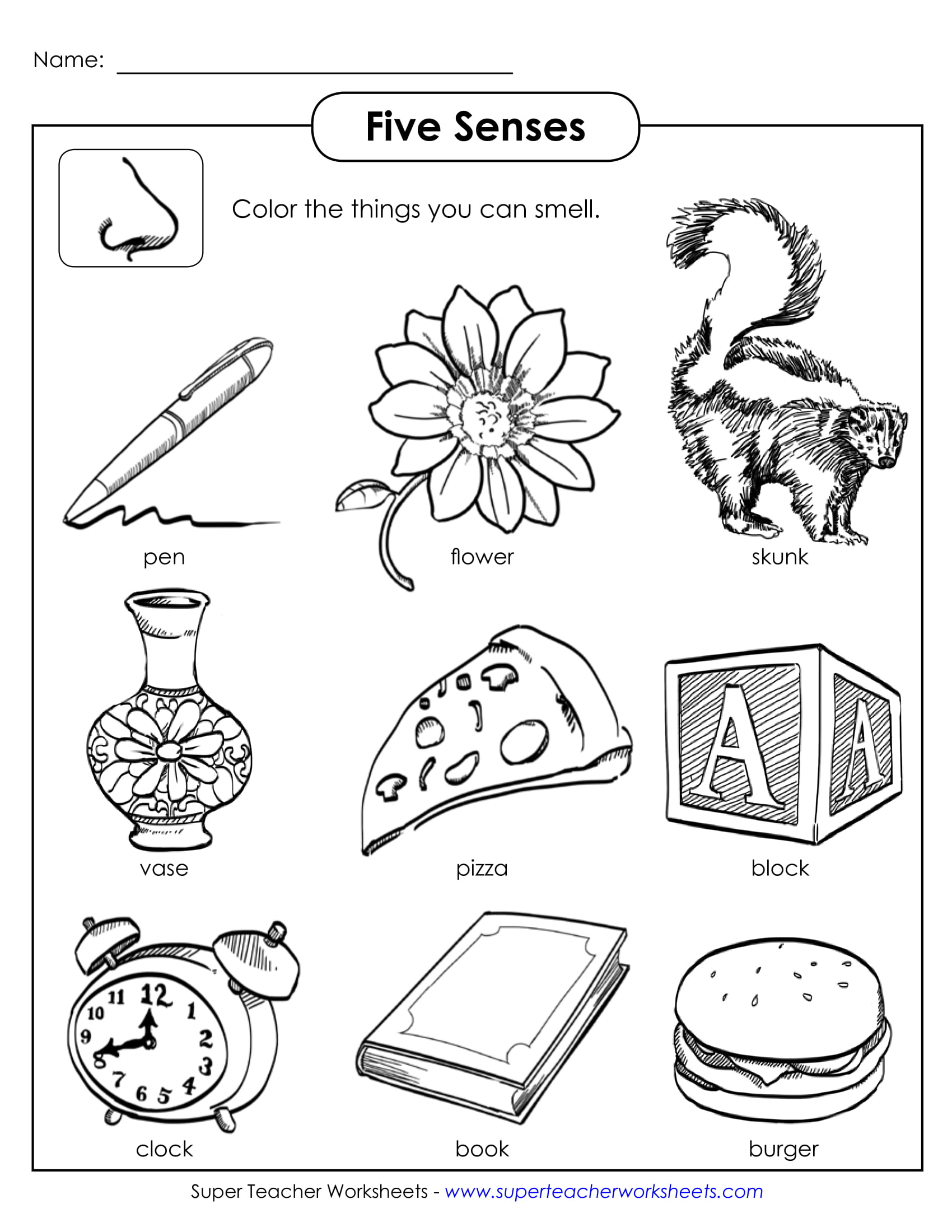 Five Senses Sample Activity Example