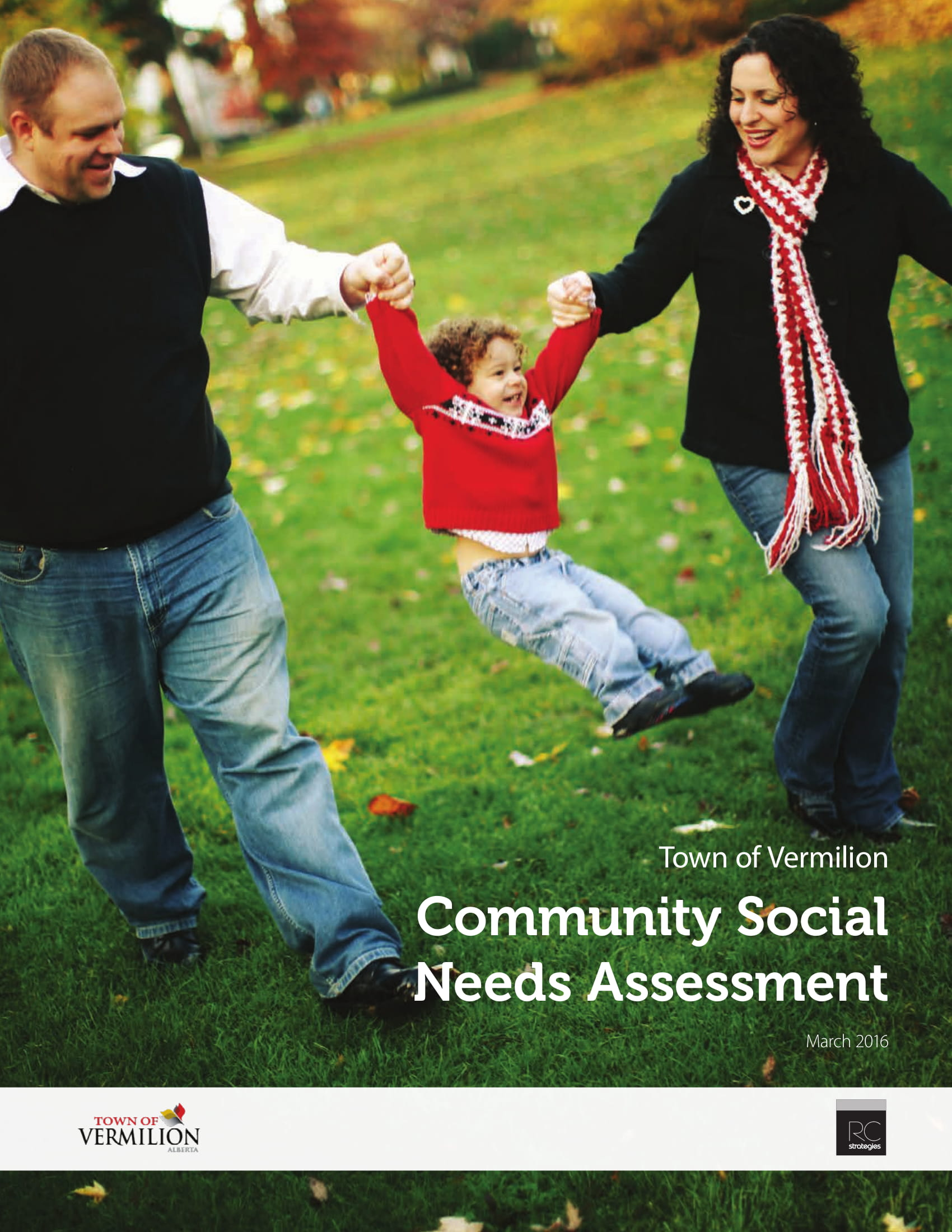 Community Social Needs Assessment Example
