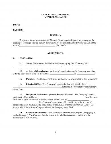 14+ LLC Operating Agreement Examples - PDF, DOC