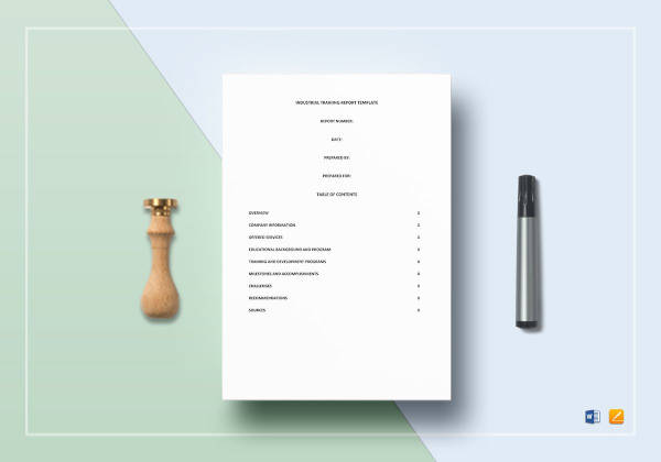 professional business report format