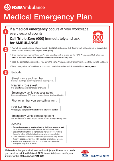 9 Emergency Care Plan Templates and Examples  PDF Word  Examples