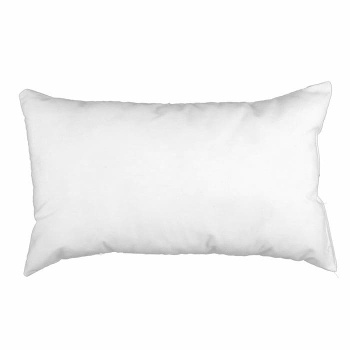 123939 x 203939 FeatherDown Pillow Form White Discount