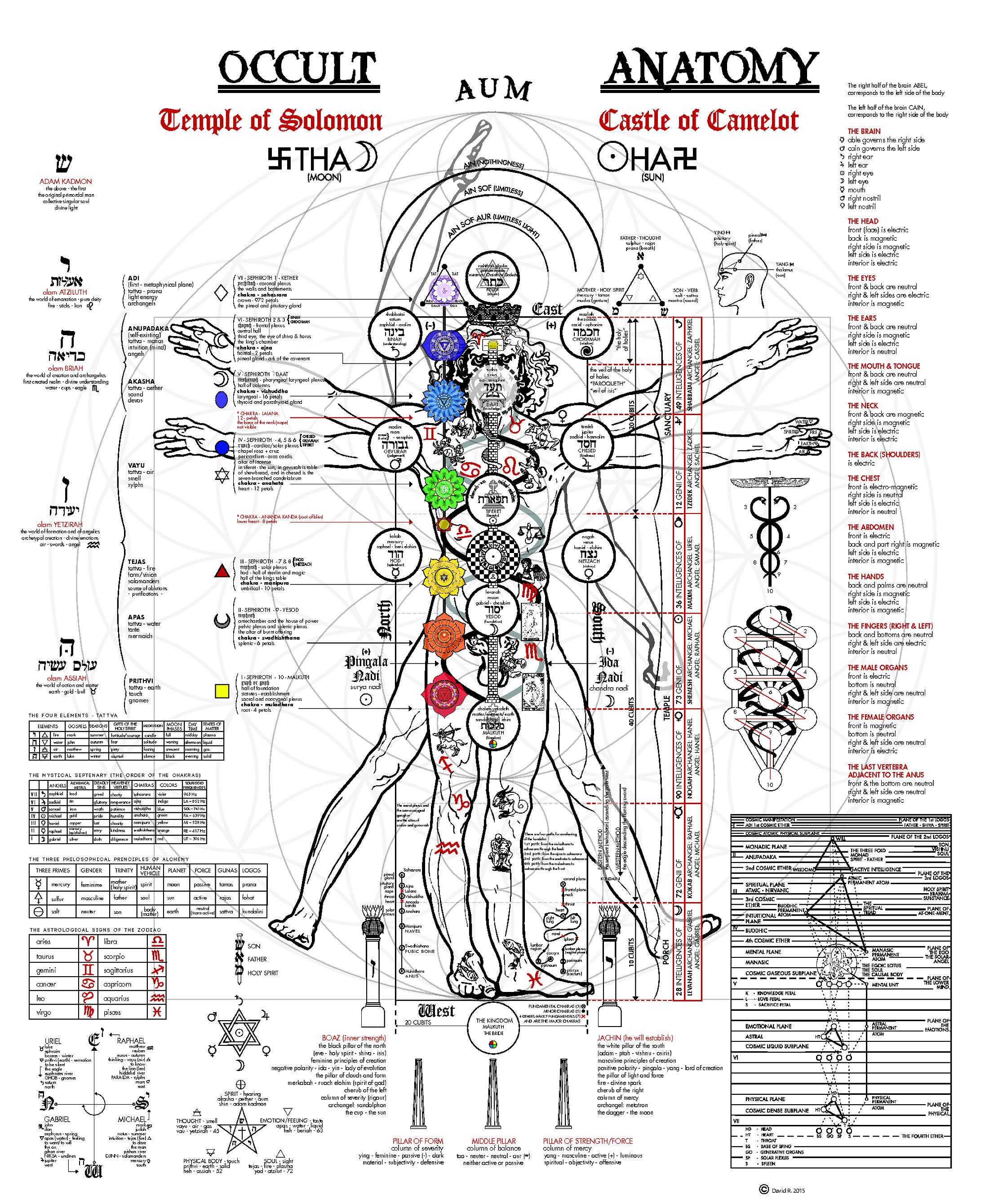 THE OCCULT ANATOMY OF MAN | Reality Files