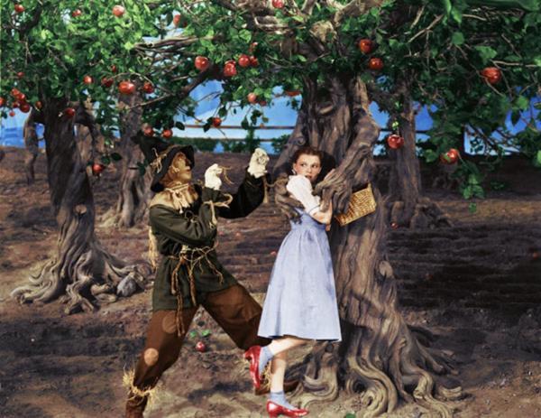 8 Great Trees Life In Movies Fandango