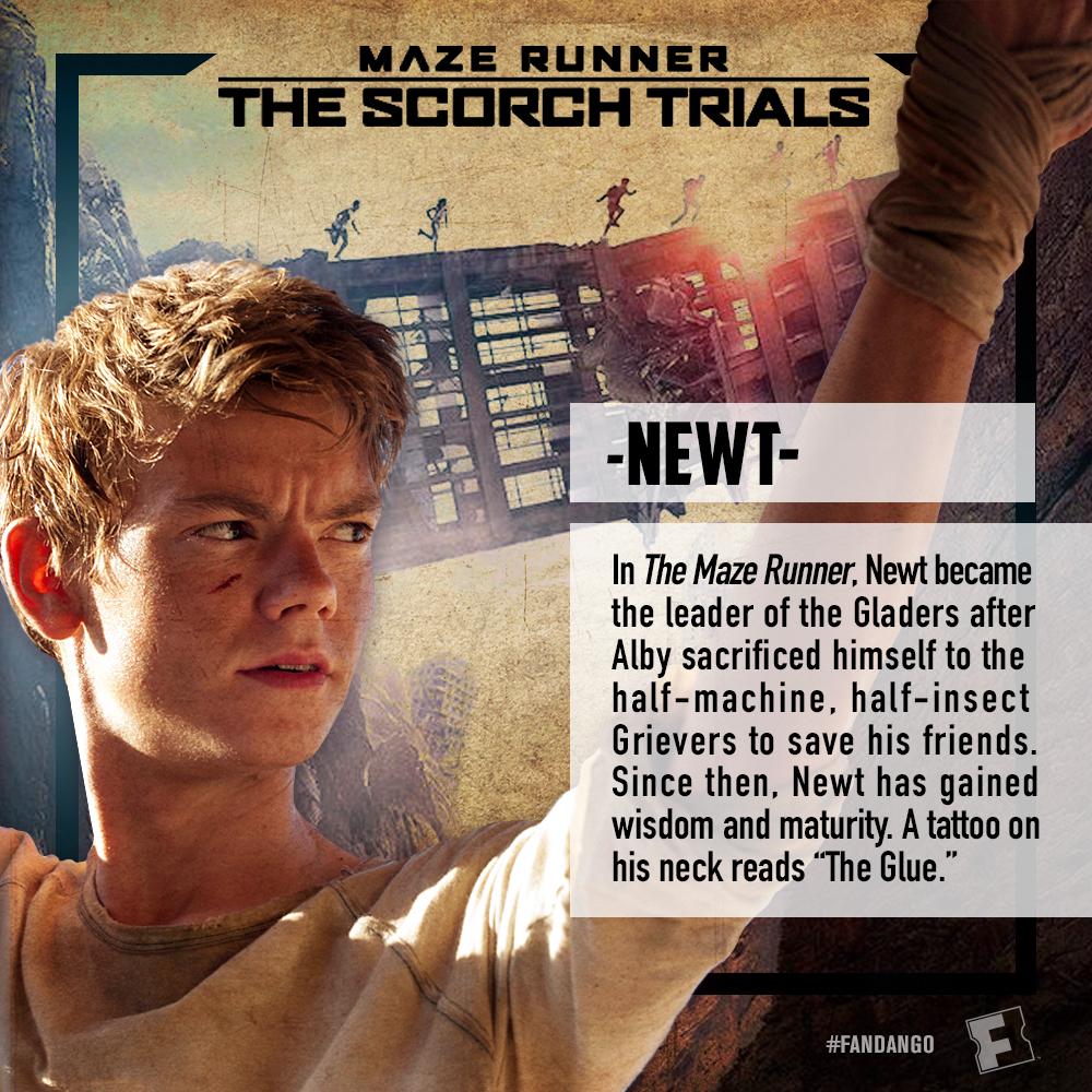 'Maze Runner The Scorch Trials' Character Cards Fandango