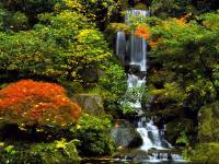 Portland images Japanese Garden HD wallpaper and ...