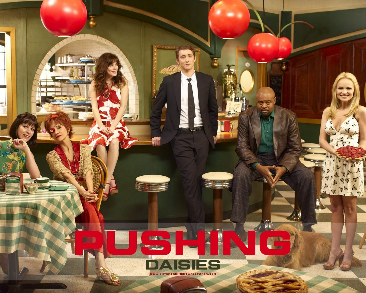 https://i0.wp.com/images.fanpop.com/images/image_uploads/Pushing-Daisies-Cast-pushing-daisies-791484_1280_1024.jpg