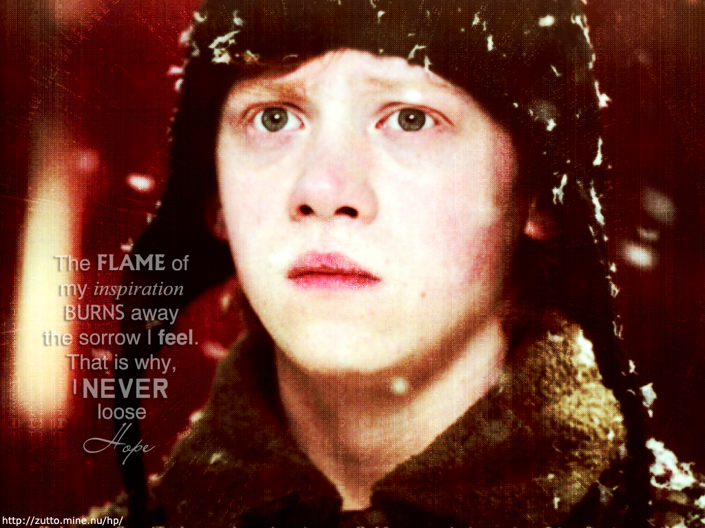 Dumbledore Quotes Wallpaper Hd Ron Weasley Harry Potter Wallpaper 213593 Fanpop