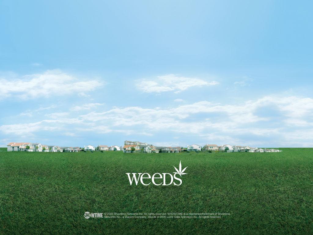 weeds, gotham green