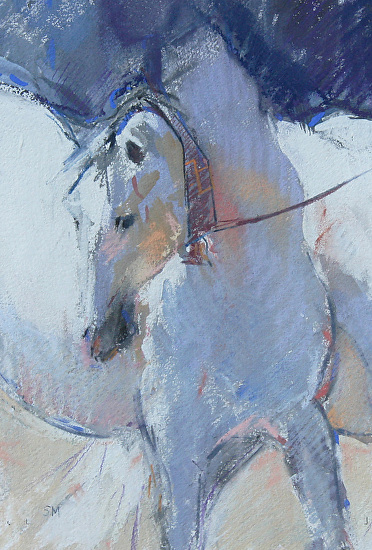Cobra Mare by Sally Martin Pastel ~ 12inch x 7.75