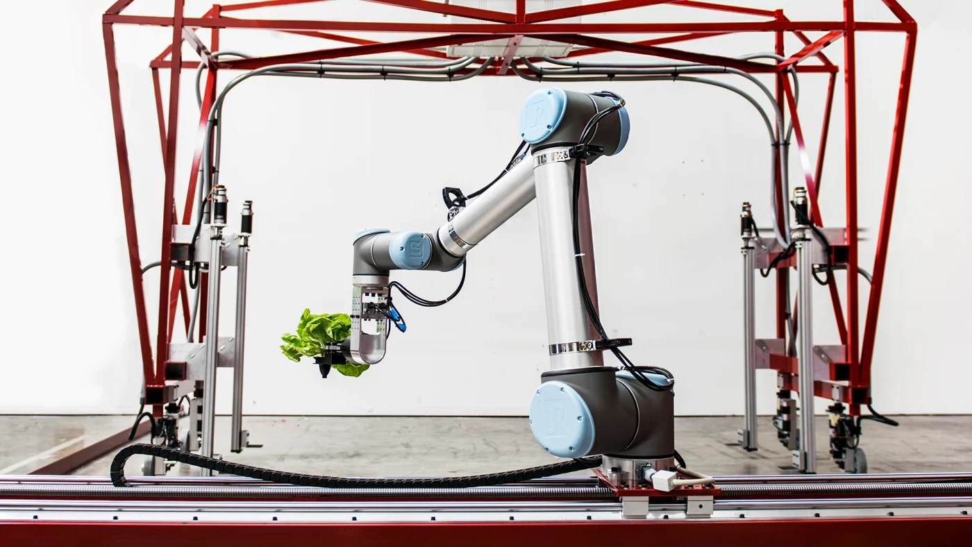 This Robot Handles The Entire Process Of Growing Lettuce By Itself