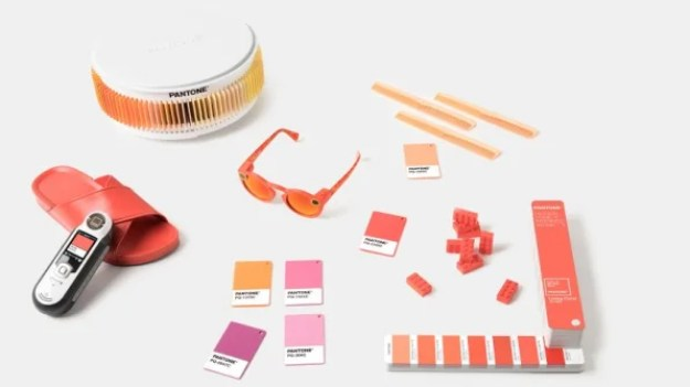 2-90272442-pantoneand8217s-color-of-2019-is-the-color-of-resistance-813x457 Millennial Pink is dead, and Pantone's Color of the Year killed it Interior