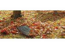 Draper 3083p Plastic Leaf Rake