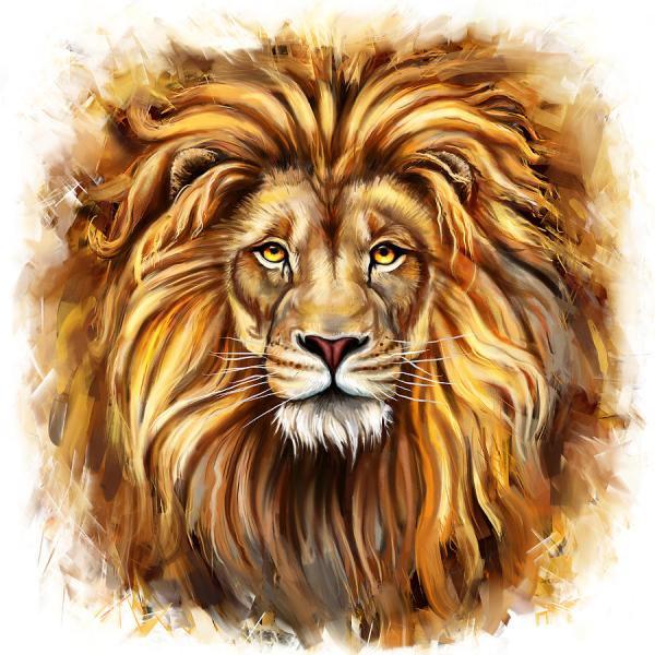 Lion Head In Front Painting Marcin Moderski