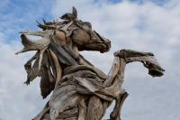 Driftwood Horse Photograph by JoJo Photography