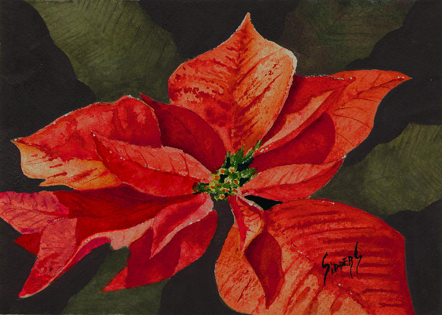 Francis Poinsettia Painting By Sam Sidders