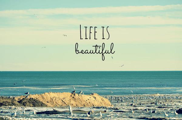 10 EASY STEPS TO LIVE A BEAUTIFUL LIFE