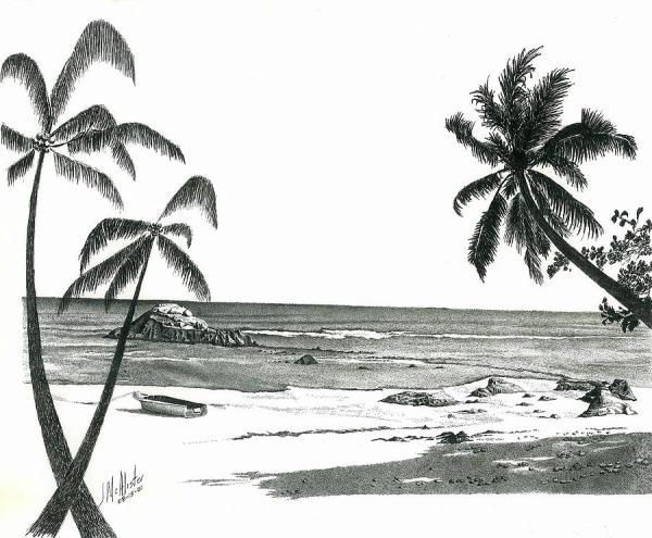 seychelles beach drawing jimmy