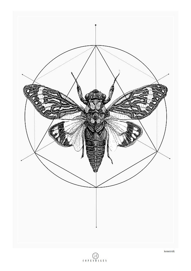 Cicada Digital Art by Kenword Maah