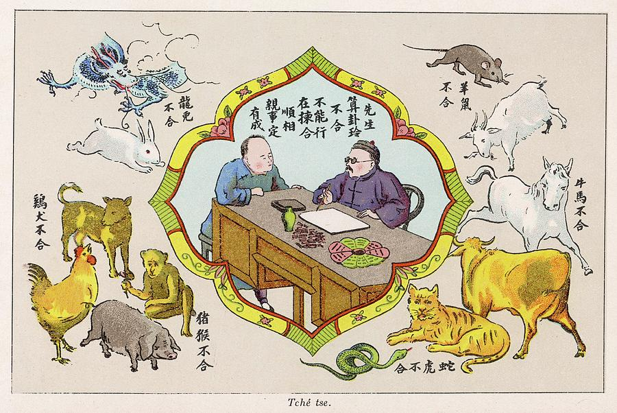 a chinese fortune teller