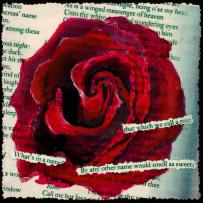 A Rose by Any Other Name Painting by Mary Benke
