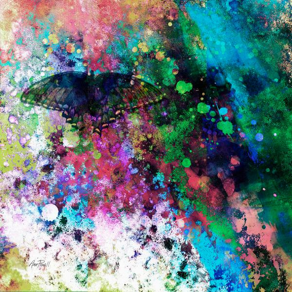 Butterfly Abstract Art Paintings