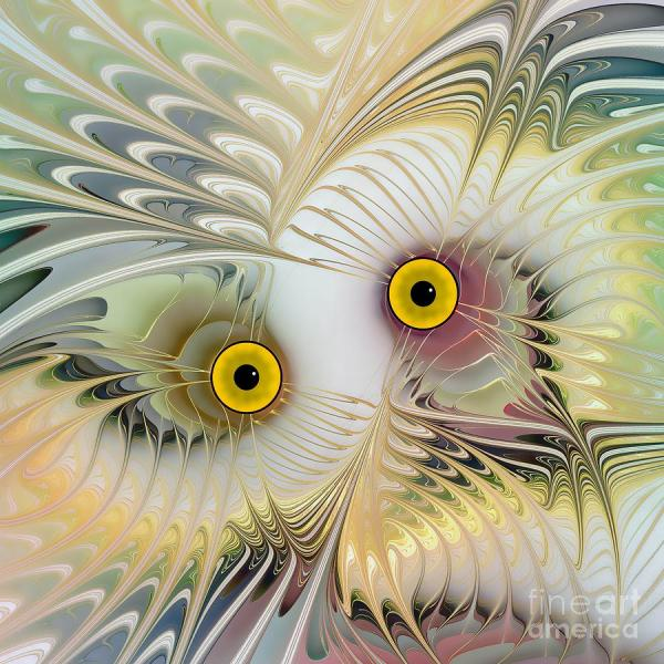 Abstract Owl Digital Art Klara Acel