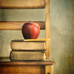 Canvas Beach Chair Eames Lounge And Ottoman Apple Old Books On School Photograph By Sandra Cunningham