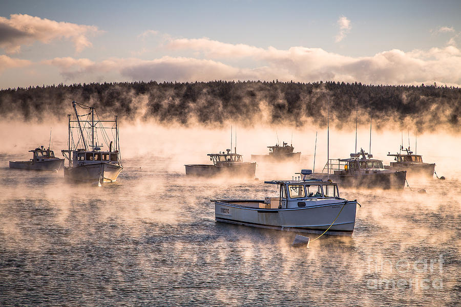 Arctic Sea Smoke Photograph By Benjamin Williamson