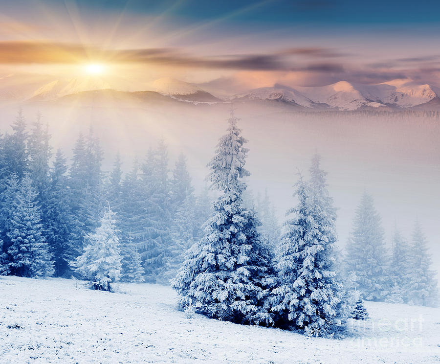 Falling Snow Wallpaper Iphone 5 Beautiful Landscape Winter Sunset Photograph By Boon Mee