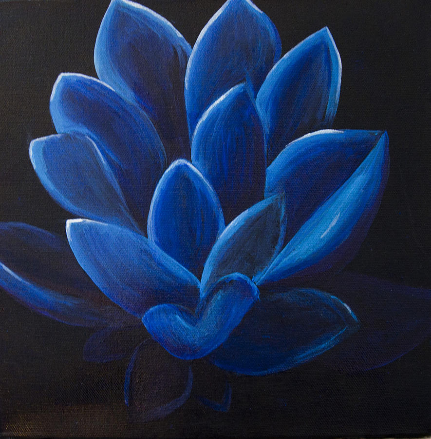 blue lotus flower on