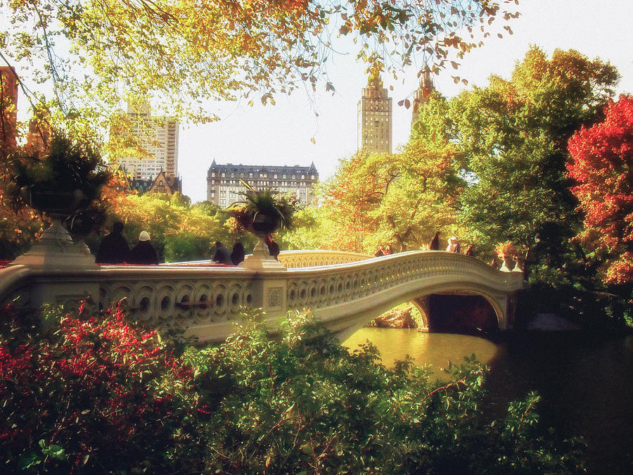 Fall Foliage Wallpaper For Iphone Bow Bridge Autumn Central Park Photograph By Vivienne