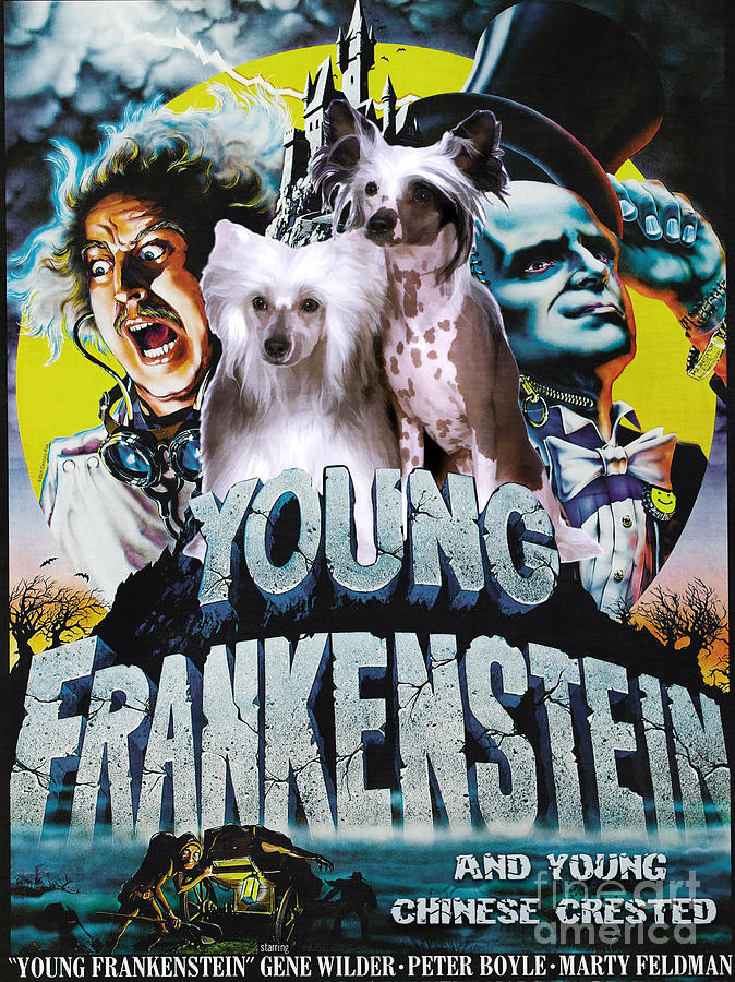 chinese crested art canvas print young frankenstein movie poster by sandra sij