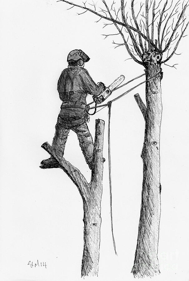 Dangerous Work Stihl Chainsaw Drawing by Gordon Lavender